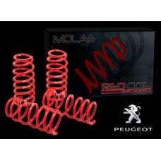 Molas Esportivas Red Coil - Peugeot 307 (2003 em diante)