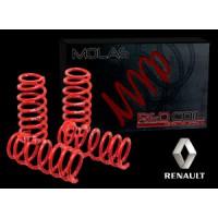 Molas Esportivas Red Coil - Renault